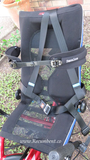 Pelvi-Loc belt with seat belt